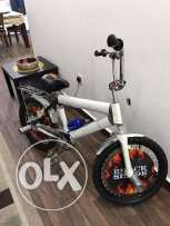Brand New Cycle for Sale