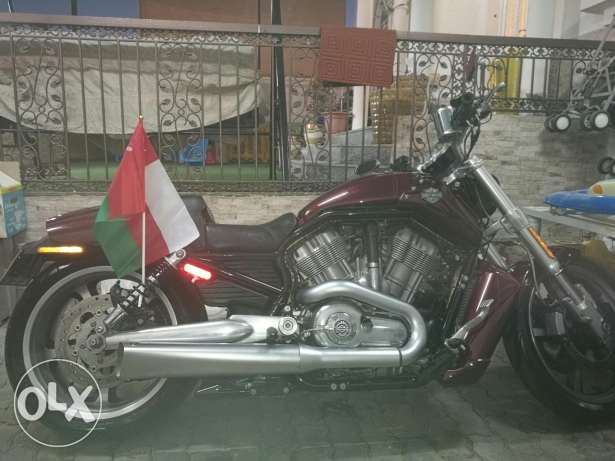 Harley v rod modell 2011 very cleanClean القادسية -  6