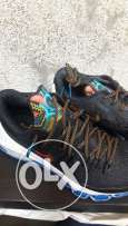 Brand new Kevin Durant 8 bhm