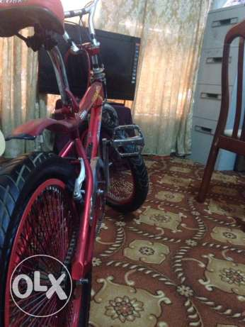 cycle for age group 17-13 ابو حليفة -  3