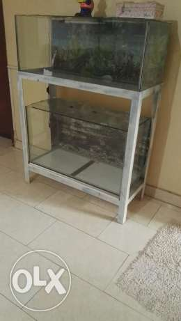 Revised price of aquarium