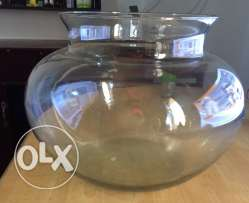 ound big fish tank for sale