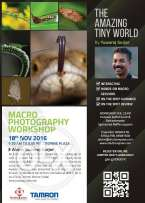 The Amazing Tiny World - Macro Photography Workshop