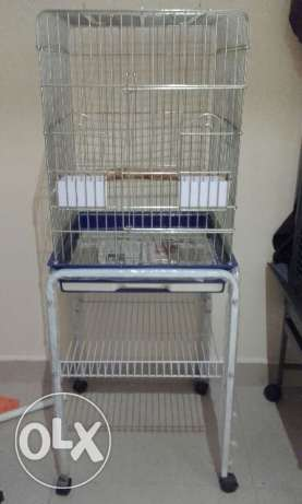 Bird Cages for Sale - Must Go - Offers! الفنطاس -  1