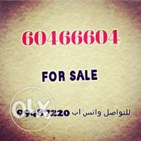 Cold number for sale