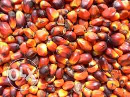 Refined and Crude palm oil and sunflower oil.
