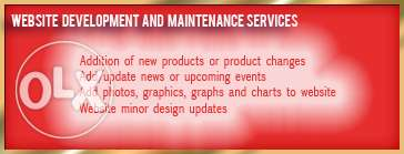 Website Development and maintenance Services
