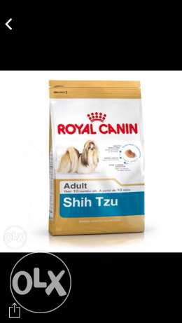 food for dog Shih tzu