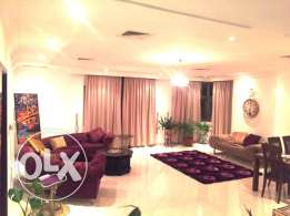 Furnished huge 1 bed luxury apartment for rent
