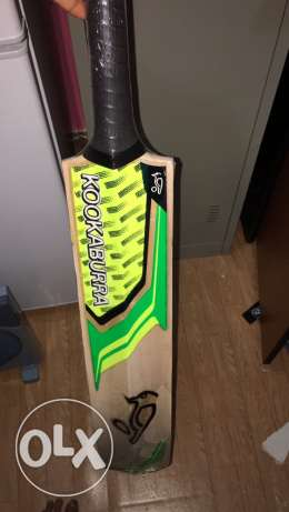 cricket bats just 10 kd only