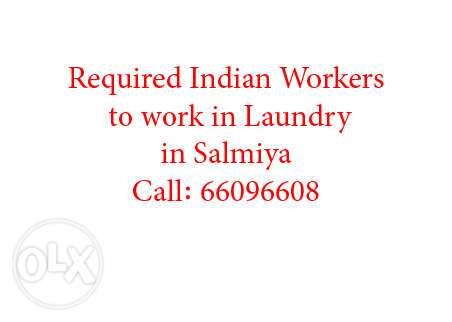Required Indian Workers for Laundry in Salmiya