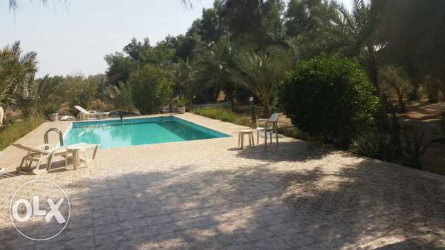 Abdaly 150000m2 farm with 2 villas ,olives,palm trees...