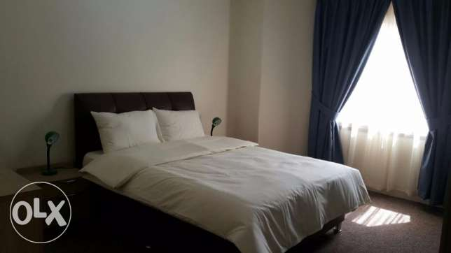 Fully furnished 3 bedroom apartment in Salwa سلوى -  1