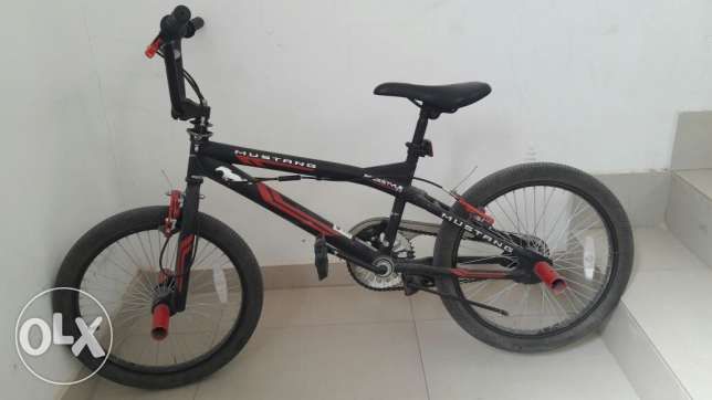 Mustang cycle For Sale