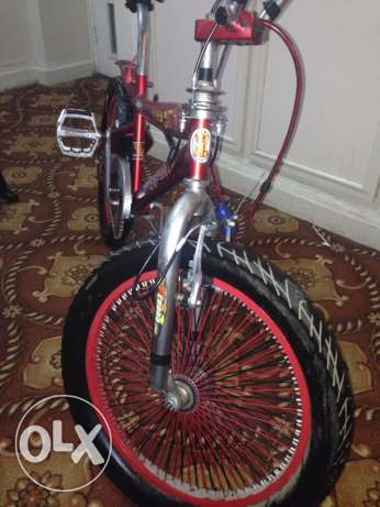 cycle for age group 17-13 ابو حليفة -  4