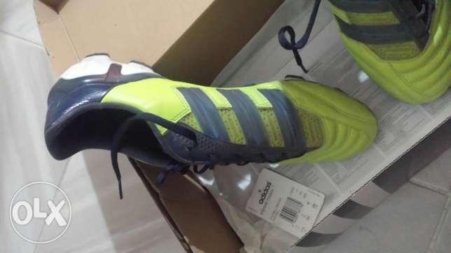 Adidas predator for sale