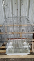 Parrot & Bird cage for sale / عن بيع قفص